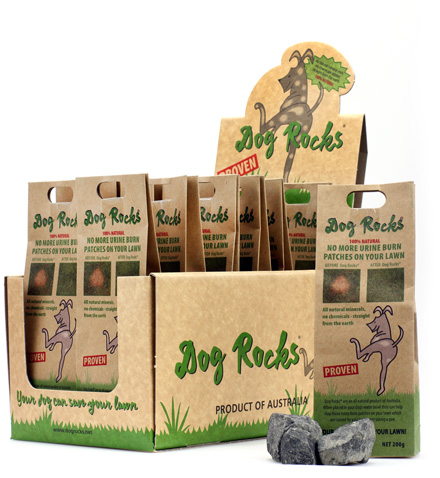Point of Sale Dogrocks
